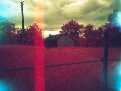img007 (pierremartial) Tags: shootfilmnotbullets shootfilmnotmegapixels filmisnotdead ishootfilm film france périgord dordogne countryside country campagne 6x45 645 middleformat moyenformat middle format moyen 45mm ga645w wide ga645 fujifilm fuji infrarouge rouge infrared red infra kodakaerochrome aerochrome400 aerochrome kodak