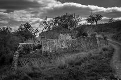Pero de Amigos 1474 (_Rjc9666_) Tags: abandoned algarve algarvesierra arquitectura bw backcountry countryside house landscape nikond5100 old portugal serraalgarvia sky travel ©ruijorge9666 sãobrásdealportel faro 2423 1474