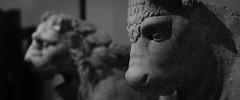 (AAcerbo) Tags: themetropolitanmuseumofart manhattan newyorkcity nyc city art sculpture museum bw widescreen dof bokeh