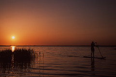 Nach Hause (TW berlinphoto) Tags: sunset standup nikonf6 nikkor 50mm14 provia100f müritz rdpiii boek slidefilm fujifilm