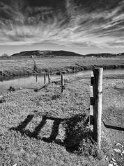 Line up (Through Bri`s Lens) Tags: somerset porlockweir fence marsh bog brianspicer canon5dmk3 canon1635f4