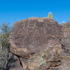 1902 Petroglyphs 03 (c.miles) Tags: coronadonationalforest petroglyphs santacatalinamountains sutherlandwashrockartdistrict
