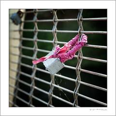 Love lock with cold weather lagging (G. Postlethwaite esq.) Tags: dof derby derbyshire macro silkmill sonya7mkii bokeh bridge closeup depthoffield lovelock photoborder photowalk selectivefocus square unlimitedphotos