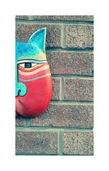 Meow ! (CJS*64) Tags: mobile mobilephone cjs64 craigsunter cjs colour colours cat wall face meow samsung samsungj6