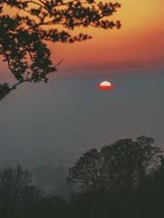 Hill of Tara (jim2302) Tags: thisisireland ireland meath tara olympus penf sun sunset spring