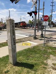 Signs, Signs, Everywhere a Sign-Main Street, Barrington, IL May 14 2019 (Tom J. Burke) Tags: barrington il cn eje railroad train