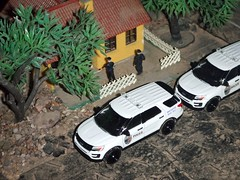 Police Blotter 5/15/2019 (THE RANGE PRODUCTIONS) Tags: greenlight hoscalefigures 164scale dioramas diecast diecastdioramas fordpoliceinterceptorutility model toy