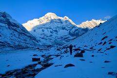 IMG_5531 (Dreamland 69) Tags: annapunrabasecamp annapurna annapurnatrek mountains nepal trek