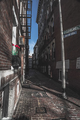 Old Boston Alley (yarnim) Tags: tulip flower alley boston massachusetts building architecture vintage old colors faded sony a7m3 a7iii a7 sel24105g 24105mm zoomlens crop bricks