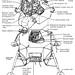 Lunar Module 1