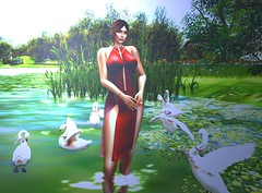 A Good Day (sofiamisty) Tags: exploresecondlife explore catwa avatar navycopper beauty nature maitreya secondlife sl sim scenery second firestorm garden life landscape photography photo romance relax water swan unitedcolors
