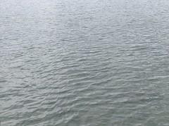 Lake Annecy @ Petit Port @ Annecy-le-Vieux (*_*) Tags: printemps spring 2019 europe france hautesavoie 74 annecy annecylevieux petitport lakeannecy lacdannecy