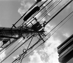 電位差 (electric potential difference) (Dinasty_Oomae) Tags: exakta exaktavx エクサクタ エクサクタvx イハゲー ihagee 白黒写真 白黒 monochrome blackandwhite blackwhite bw outdoor 東京都 東京 tokyo 墨田区 sumidaku 送電線 電線 電柱 utilitypole utilitywire 雲 cloud