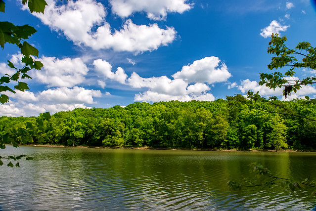 Hoosier National Forest - Saddle Lake - May 14, 2019