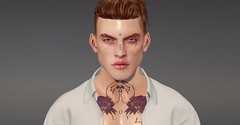 -[CL]- (Clever Language) Tags: lelutka guy bento head cl cleverlanguage facetattoo male skins best