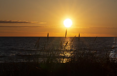 The most beautiful sea... (Carolin de Verdier) Tags: sunset orange colourful sea ocean solnedgång sjö hav skåne scania sweden ängelholm skälderviken