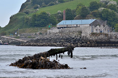 Glenarm, County Antrim (nathanlawrence785) Tags: antrim northern ireland ni ulster glenarm carnlough family walk summer spring sea