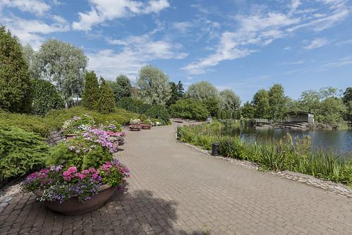 Sapokka Water Garden 486