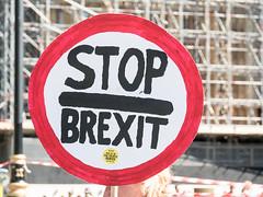 Anit-Brexit Picket, Westminster, London, UK (msadurski) Tags: 35100 gm5 lumix uk brexit