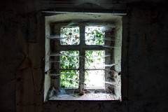 Window... (aphonopelma1313 (suicidal views)) Tags: urbex urbexpeople verfall leerstand zombie abandoned urbanexploration exploring urbexplaces decay igurbex rottenworld urbanart explorer photography verlassen schandfleck explore everythinglost canon ruins forgotten urbanstreet urbanphotography love industrial nrw architektur mycity forbiddenplaces brokenglass urbanexploring lostplace