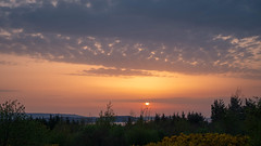 Sunset at Aultbea (San Francisco Gal) Tags: sunset aultbea lochewe wester ross scotland sky sun cloud tree gorse