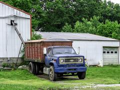 Chevrolet Grain Truck (J Wells S) Tags: chevroletgraintruck chevy chevroletstaketruck rust rusty crusty junk falmough kentucky happytruckthursday htt