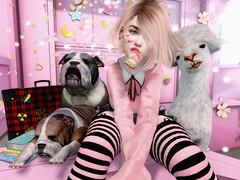 ♥♥♥ (ღ ღ[[J E SSIE ]] ღ ღ) Tags: luas avatar secondlife secondlifeblog sl style av avi blogger cute genus babyface genusproject maitreya pose post bulldog rezzroom mishmish