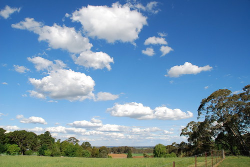 Downtime Down Under - When You View the Beauty of the NSW Countryside It's Difficult Not to Have Your Head in the Clouds!