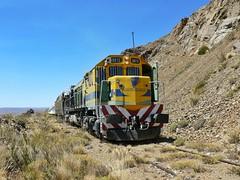 Vías de Montaña (nathanielsilav) Tags: trenpatagonico ferrocarrilesargentinos trenes viasdemontaña viajes argentina generalmotors bariloche patagonia railways