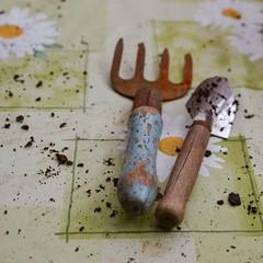 En la huerta... (Irene Carbonell) Tags: huerta 35mm nikon