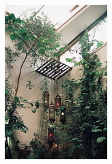 0082-2944-34 (jimbonzo079) Tags: ciccus cafe coffe monastiraki athens greece hellas 2019 interior plant candle lamp light decoration green city town urban canon a1 fd nfd fdn 35105mm f35 slr lens vintage old retro mood kodak gold 200 expired film analog negative c41 color ciccuscafe canona1 fd35105mmf35 nfd35105mmf35 fdn35105mmf35 newfd35105mmf35 kodakgold200 kodakgold art