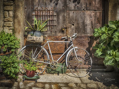 """La vieja puerta"", (""The old door"") (Capuchinox) Tags: door puerta bicicleta bicycles nik hdr olympus rustic rural plantas plants"