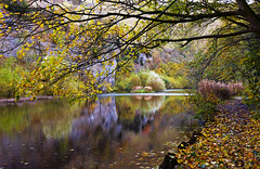 Rivendell (Wildlife & Nature Photography) Tags: nature peakdistrict peakdistrictnationalpark river autumn trees fall peace landscapephotography derbyshire reflections rivendell water