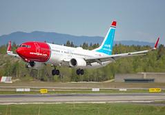 LN-NGE (Skidmarks_1) Tags: lnnge norwegianairshuttle boeing737800 engm norway osl oslogardermoenairport aviation aircraft airport airliners