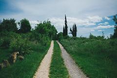 KRIS9693 (Chris.Heart) Tags: kéktúra túra hiking hungary nature balaton természet