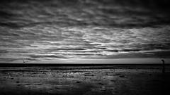 eye in the sky (yakkay43) Tags: sky lifestyle outdoor panorama adventurous sonnenuntergang sunrises sw schwarzweiss streetfotografie spiegelungen sunset sea