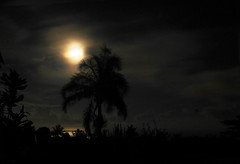 Night show (Faapuroa) Tags: lune moon coucher moonset night landscape dark nuit obscure nikon p1000 coolpix