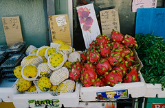 Dragon Fruit (bingley0522) Tags: contaxiia carlzeissbiogon35mmf28 kodakcolorplus200 sanfrancisco chinatown stocktonstreet market dragonfruit produce autaut