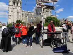 Sur le quai (Raymonde Contensous) Tags: notredamedeparis cathédrale travaux orchestre musiciens streetlife quais
