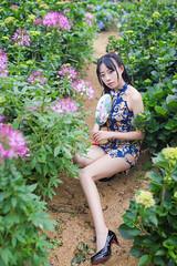IMG_1501L (攝影玩家-明晏) Tags: 人 人像 戶外 outdoor 美女 辣妹 長腿 sexy 性感 女生 女孩 高家繡球花 繡球花 flower pretty girl woman taiwan taipei model 外拍 素人 portrait