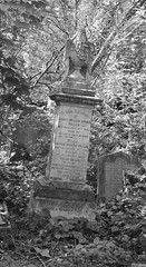 The family grave of George and Frances Pullman (IanAWood) Tags: abneyparkcemetery bringoutyourdead cemeteryclub cemeteryparks citiesofthedead friendsofabneypark headstonehunting lbofhackney londonscemeteries londonsdead londonsgraveyards londonsmagnificent7victoriancemeteries londonsvictorianvalhalla nikkorafs58mmf14g nikondf stokenewington taphophile walkingamongthedead walkingwithmynikon