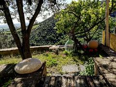 Casa Maria's garden 🌸️ . . . #like #follow #share #comment #subscribe #castelnuovodellabate #montalcino #borghettomontalcino #tuscany #tuscanygram #italy #italy #italia #santantimo #valdorcia #travel #travelblogger #travelphotography #trave (borghettob) Tags: valdorcia tuscany castelnuovodellabate holiday travelphotography santantimo italia montalcino travelholic share igtravel travelgram tuscanygram italy travelling discover instatraveling like subscribe follow borghettomontalcino travelblogger instago travels instatravel comment travel bedandbreakfast