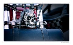 Mascot (G. Postlethwaite esq.) Tags: bsa dof derbyshire heage unlimitedphotos bobber bokeh classicbikes depthoffield mascot motorbike motorcycle photoborder selectivefocus skull windmill
