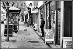 Just Waiting, Hastings. (tony allan tony allan) Tags: eludwigmeritar50mmlens street hastings shops busstop mono blackandwhite m42 manualfocus legacyglass lens