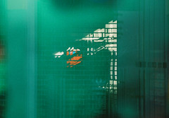 no title (biancarosa.looman) Tags: analog handheld reflection abstract green kodakfilm canon
