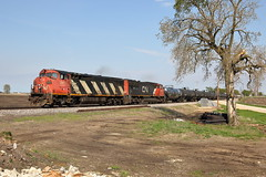 CN 2413 west in Genoa, Illinois on May 16, 2019. (soo6000) Tags: cn cn2413 2413 c408m ge cowl zebra genoa illinois freeportsub manifest freight train railroad m33791