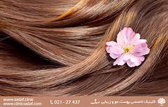 آسانترین روشها برای داشتن موهای زیبا (sadafclinic2) Tags: جهت مطالعه ادامه مطالب به وب سایت httpwwwsadafclinic مراجعه کنید health skin laser diet clinic socialdeterminants diets beard clinical