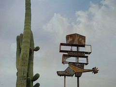 Saguaro and spurs (jimsawthat) Tags: saguaro enhanced rust metalsign vintagesign neon urban arizona tucson