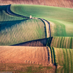 Strada interrotta (SDB79) Tags: molise campagna agricoltura strada paesaggio agro grano terra