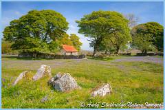 Emsworthy,Dartmoor (www.andystuthridgenatureimages.co.uk) Tags: emsworthy dartmoor nationalpark landscape bluebells barn flowers drystone was granite trees fields spring canon